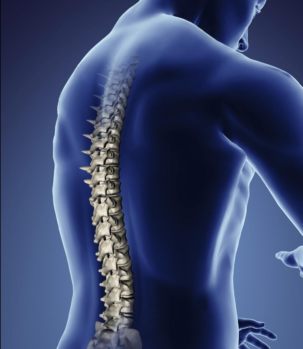 Остеопатия, мануальная терапия. невролог